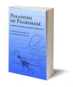 Paradigms on Pilgrimage Book Cover