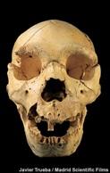 Figure 7: Atapuerca 5