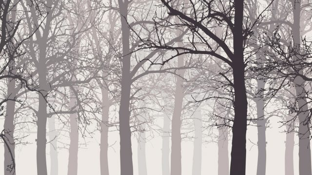 illustration of a winter forest without leaves with snow and hazy backgrounds