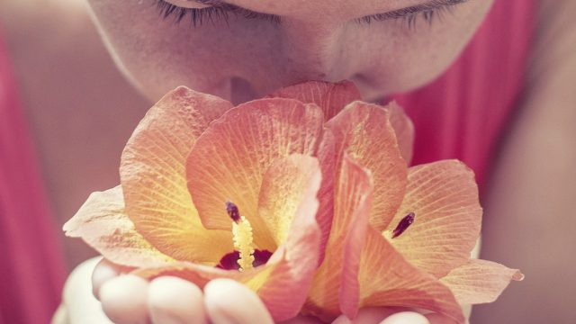 The Aroma of the Knowledge of God: How the Sense of Smell