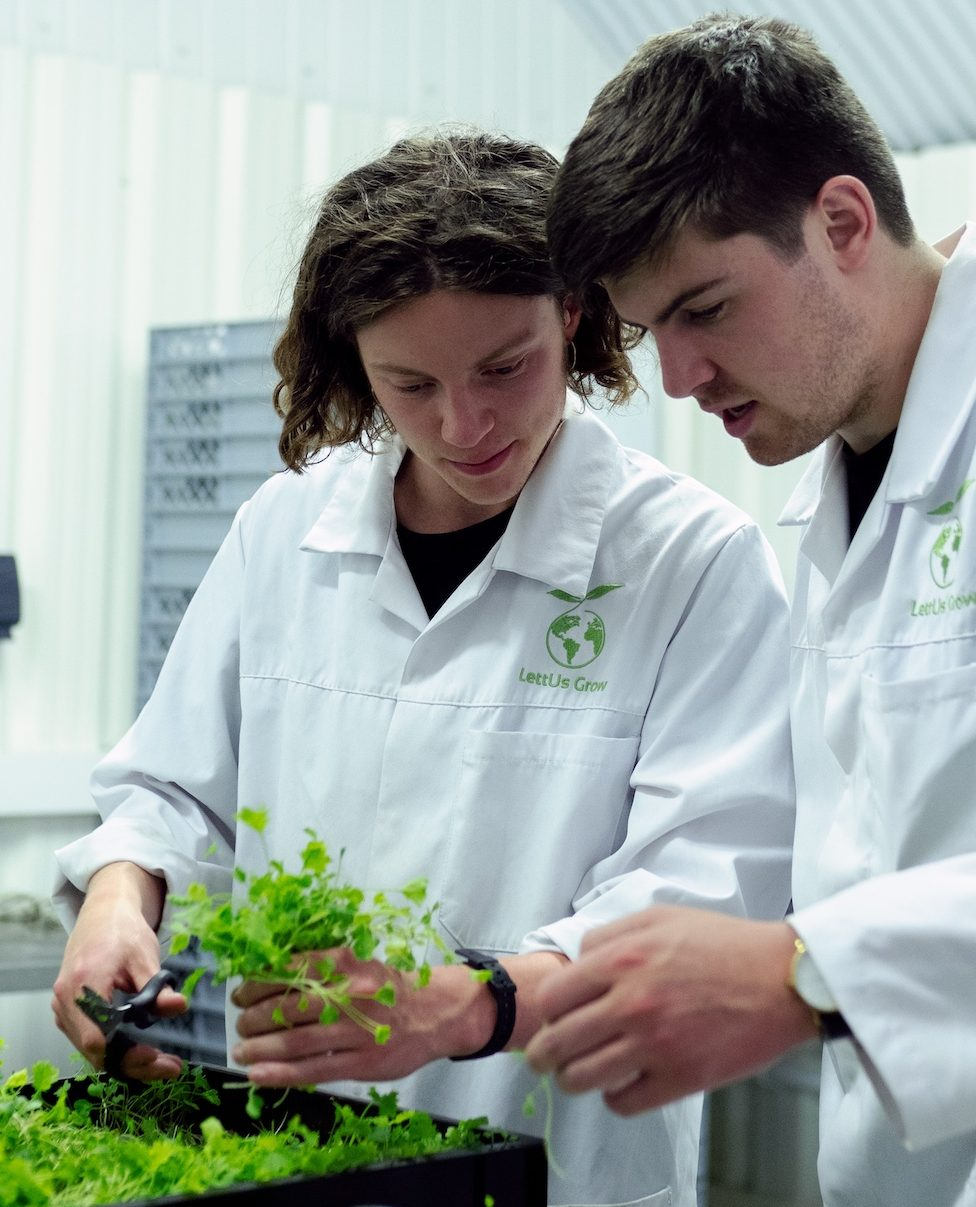 two scientists studying some growing sprouts