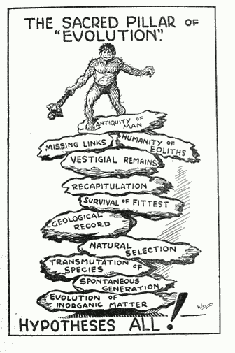 This cartoon, drawn by W. D. Ford for Why Be an Ape—?, a book published in 1936 by the English journalist Newman Watts, shows exactly what Rimmer and other fundamentalists thought of evolution.