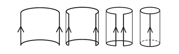 cylinder-mathematics