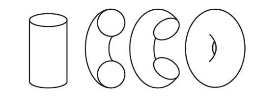 torus-mathematics
