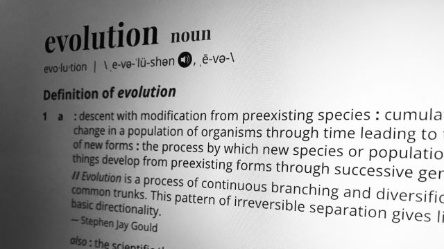 evolution vs creationism essay outline