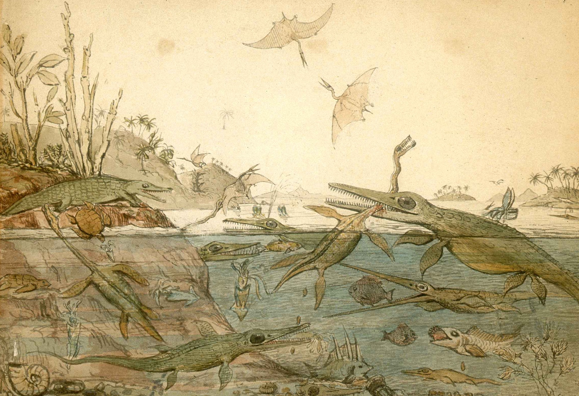 watercolor painting of many prehistoric creatures in water and the sky