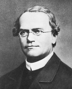 Gregor Mendel Headshot