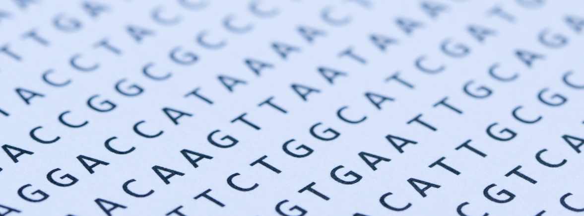 DNA sequence in letters