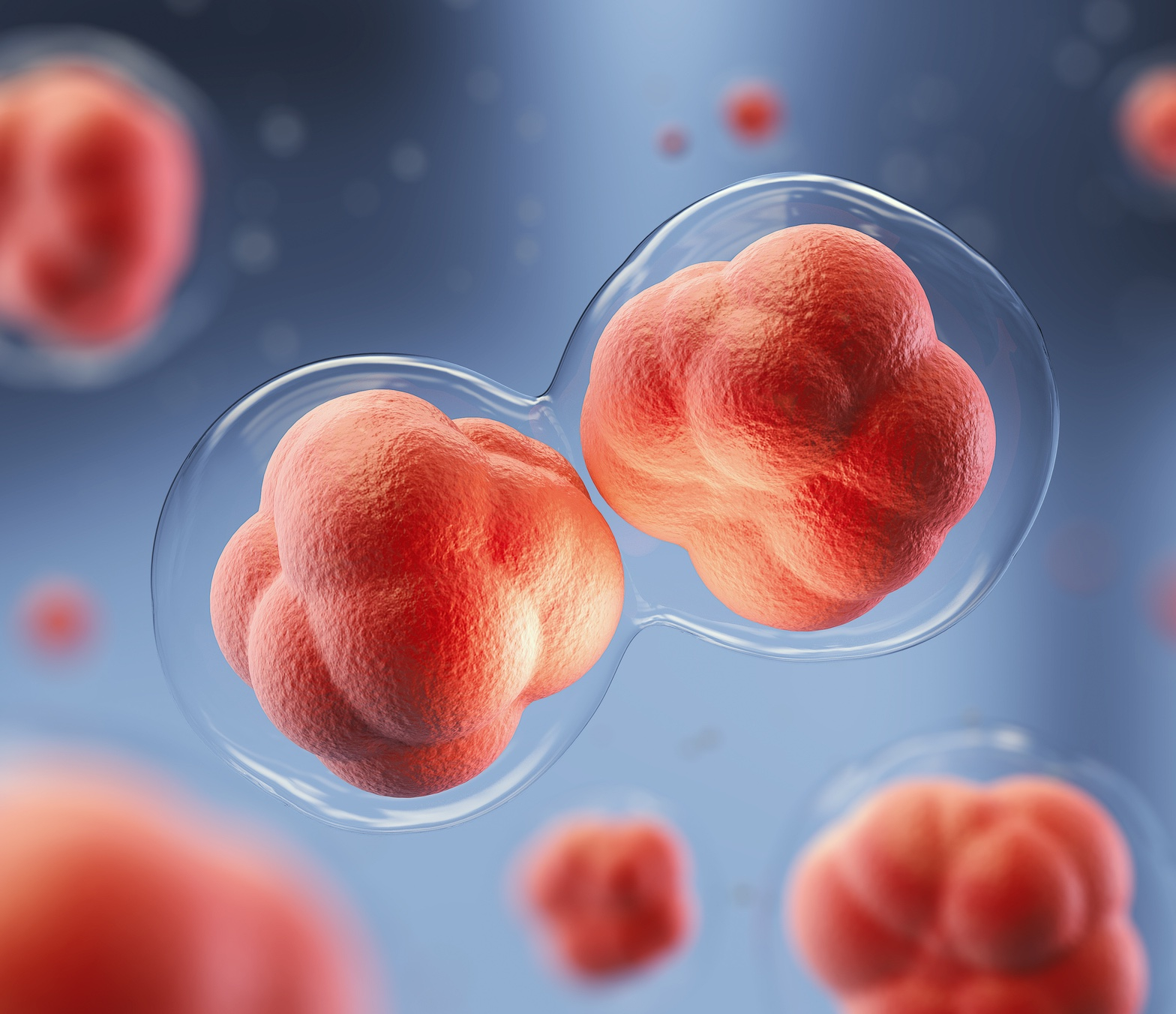 rendering of cell replication