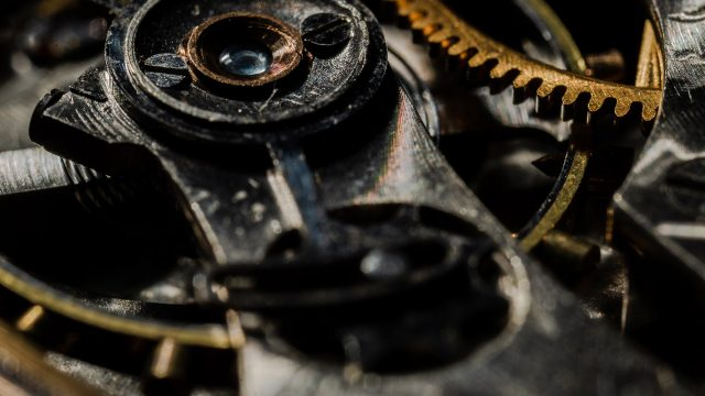 inner workings of a watch