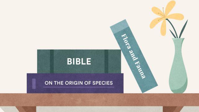 bible and evolution books on a shelf together