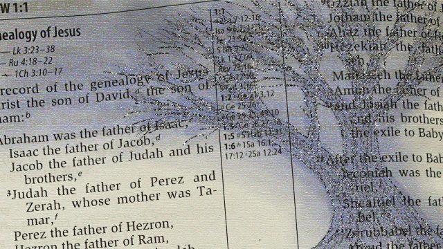 bible genealogy and tree